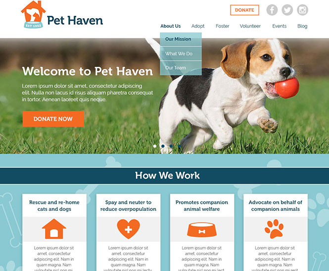 Pet Haven Web Design